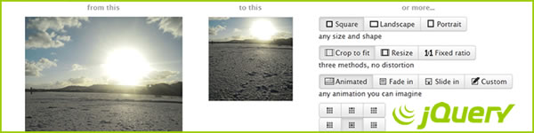 jQuery Image Resize Tool